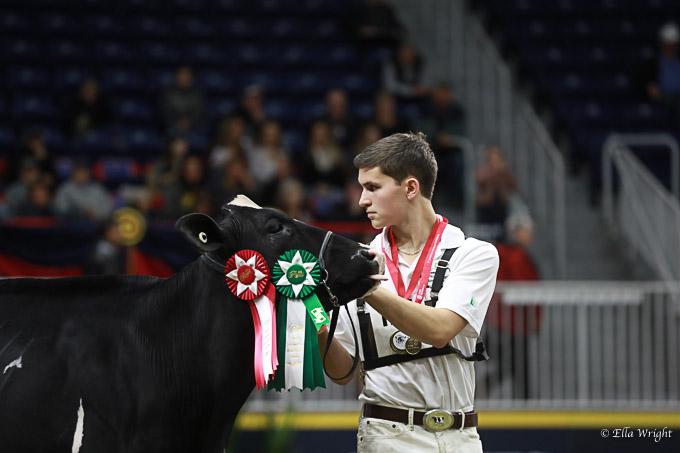 219RWF Holstein-2495