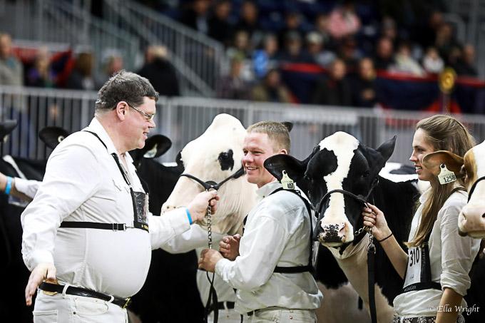 219RWF Holstein-3037