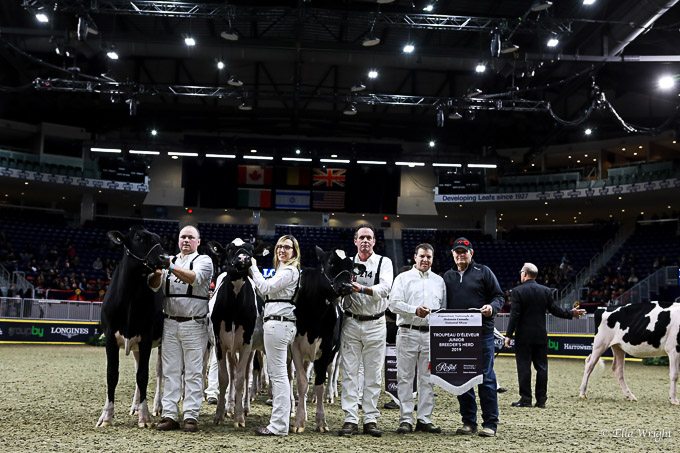 219RWF Holstein-3240