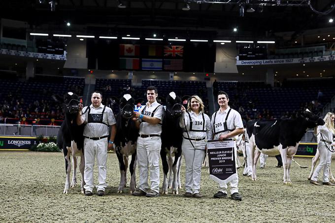219RWF Holstein-3250