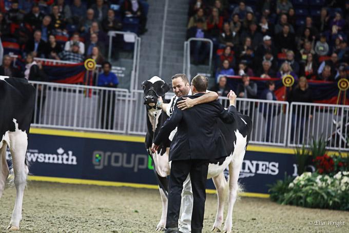 219RWF Holstein-3308