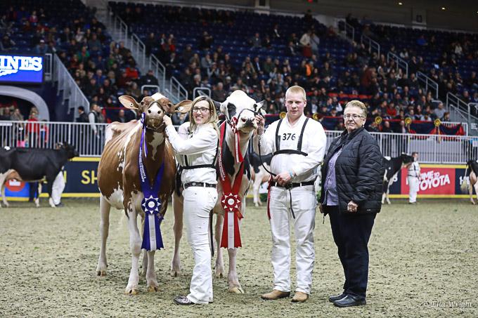 219RWF Holstein-3635