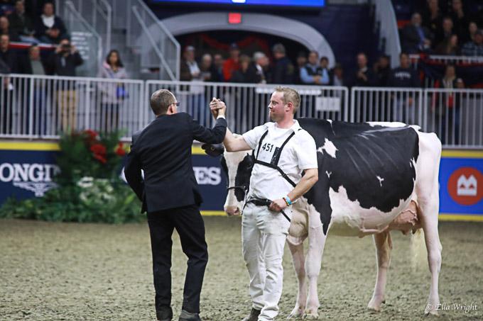219RWF Holstein-4140