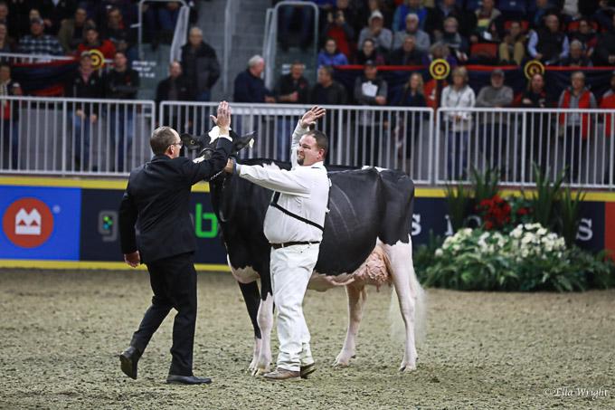 219RWF Holstein-4164