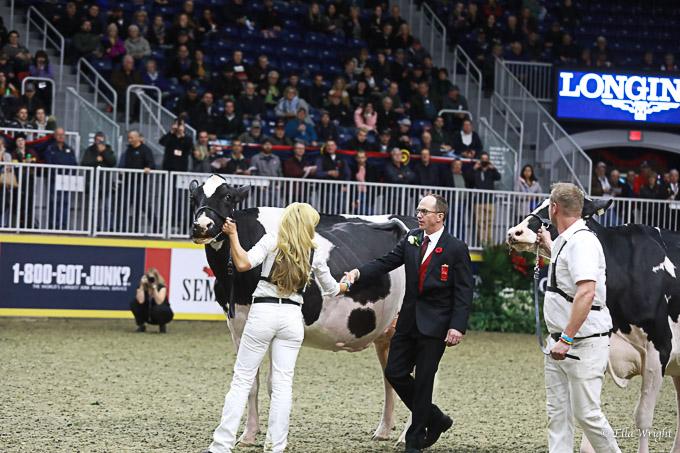 219RWF Holstein-4179