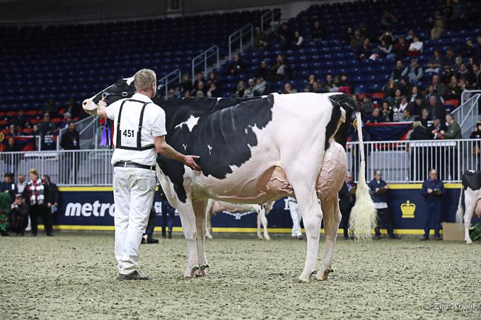 219RWF Holstein-4196