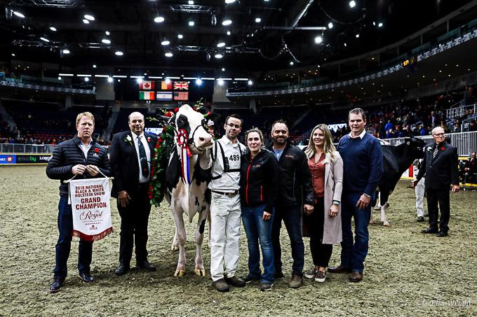 219RWF Holstein-5395