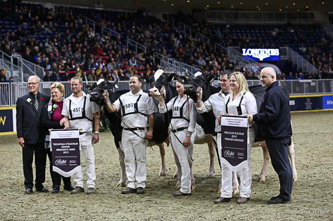 219RWF Holstein -9557