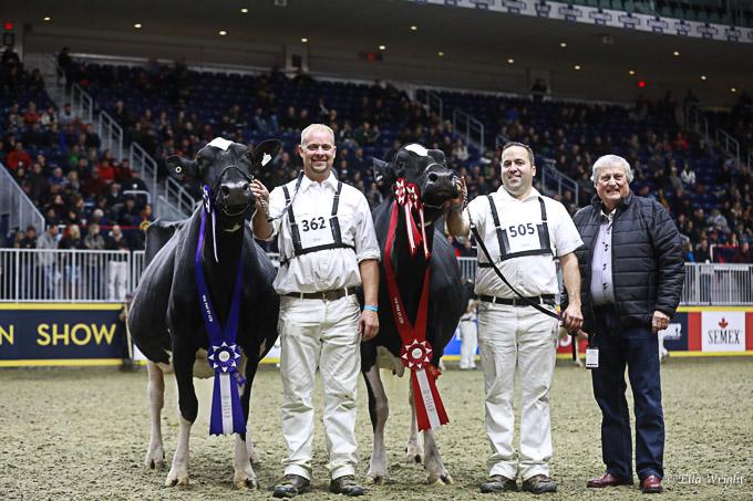 219RWF Holstein dat-4750